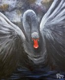 A painting of a black swan coming out of the shadows by Janet Bray