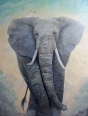 """""""Eleanora"""" - a painting depicting an approaching African elephant with a cattle egret perched on its shoulder, by Janet Bray"""
